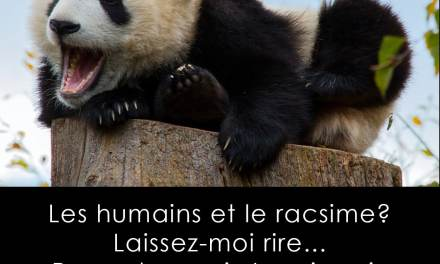 Les humains et le racisme…