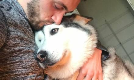 Quand ton chien est ton meilleur ami