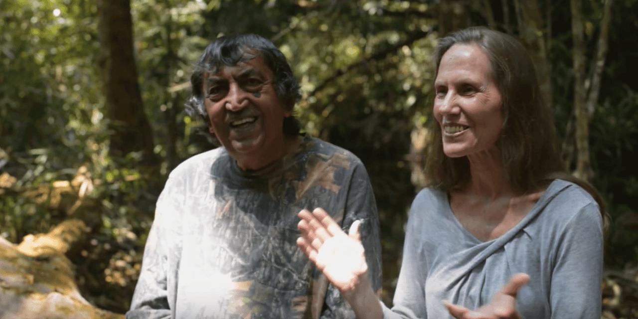 Ce couple a racheté cette forêt en 1991 pour la revitaliser, voici le résultat impressionnant 26 ans après !