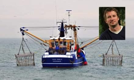 France: Pêche électrique: Jadot (EELV) pousse « un coup de gueule »