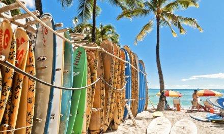 Hawaï va devenir le premier État à interdire les crèmes solaires nocives pour la faune marine