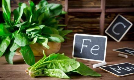 A quoi sert le fer dans l'organisme et où le trouver dans notre alimentation. Dans la viande, mais pas que… loin de là.