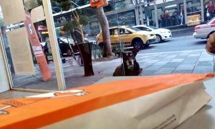 El Jefe, le chien accro aux pizzas! Viral!