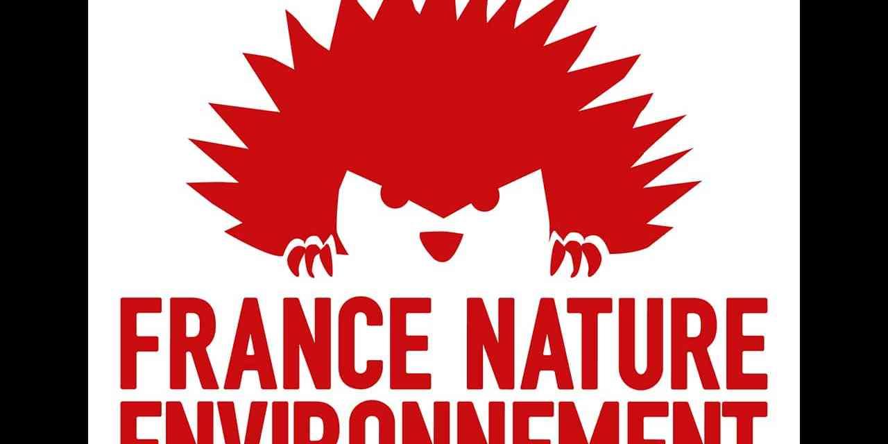 Michel Dubromel, président de France Nature Environnement : « les gens ne sont pas opposés à la fiscalité écologique, ils souhaitent un accompagnement de l'État qui ne vient toujours pas »