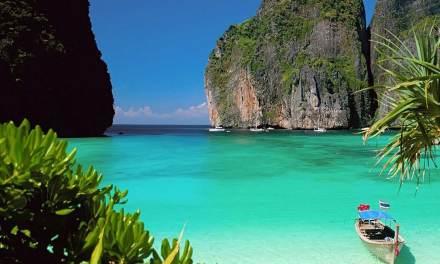 Thaïlande : retour de petits requins dans la baie de « La Plage »