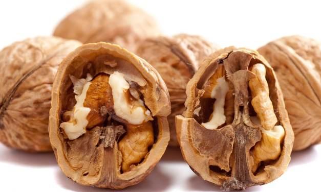 Moins de viande, plus de noix : un régime bon pour votre santé et celle de la planète