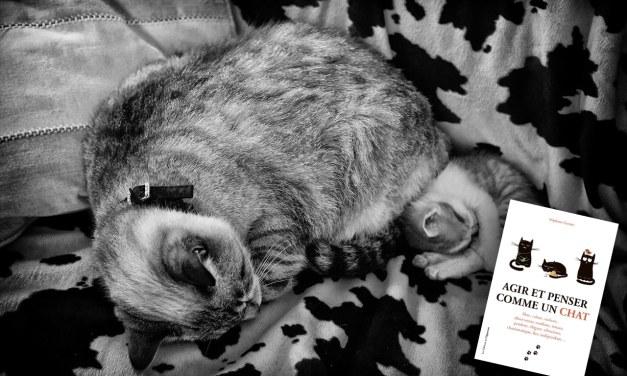 Agir et penser comme un chat – Stéphane GARNIER