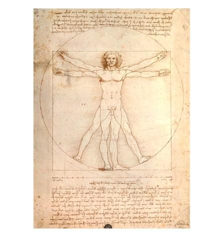 Puzzle 1000 ART Esquema de las Proporciones, Leonardo da Vinci