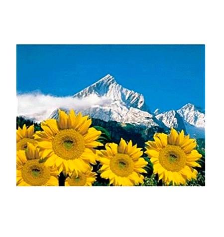 Puzzle 1000 Alpes Bávaros – Ravensburger