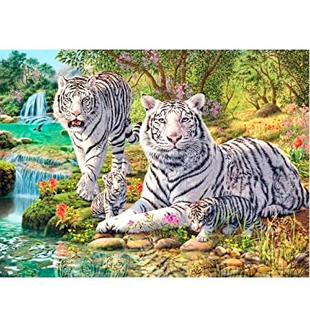 Puzzle 500 Tigres Blancos – Ravensburger
