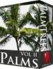 51 Palm Tree Textures - NetRender.com