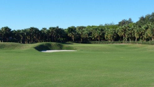 Miromar Lakes Beach and Golf Club Miromar Hole 15