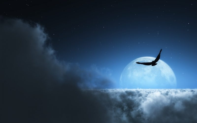 He sobrevolado la luna