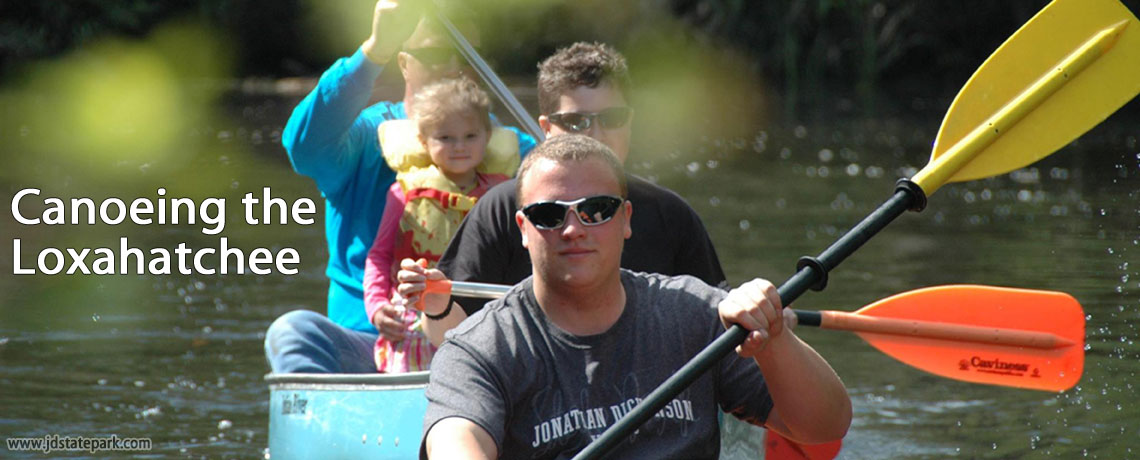 Canoeing in the Loxahatchee River | Jonathan Dickinson State Park, Hobe Sound, FL