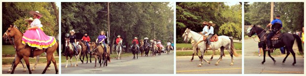 Parade horses collage