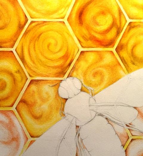 bee drawing in progress 2