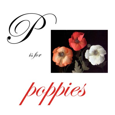 P is for Poppies
