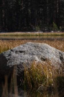 Rock Creek, Eastern Sierras, California