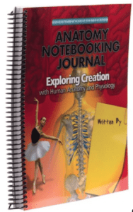 anatomy physiology journal