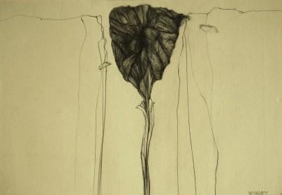 Ciboire (crayon sur papier Ingres 21 x 29,7 cm)
