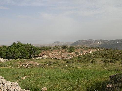 judean hills photo