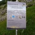 [Gastbeitrag von Wüstenmaus] Wie bereits angekündigt, gibt es hier nun den Tripreport vom relativ neuen Salewa Klettersteig am Iseler in Oberjoch. Das ist in der Nähe von Oberstdorf im Allgäu […]