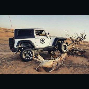 JeepWranglerOutpost.com-jeep-fun-g (26)