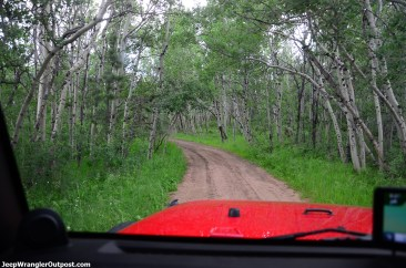 JeepWranglerOutpost.com-jeep-wranglers-set2 (48)