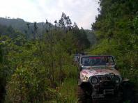 JeepWranglerOutpost.com-jeep-fun-h (53)