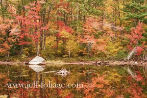 fall reflections on pond