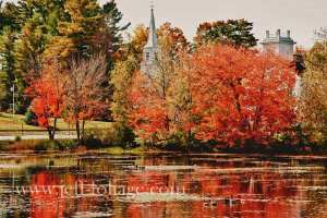 Church steeple reflecting in ponds surface along with reds and orange fall foliage