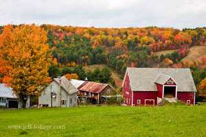 A Vermont farm amid the fall foliage in New England on route 14