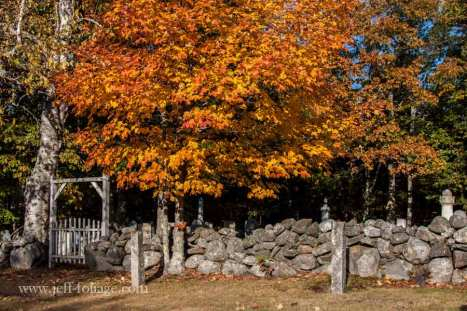 Harpswell Maine fall color