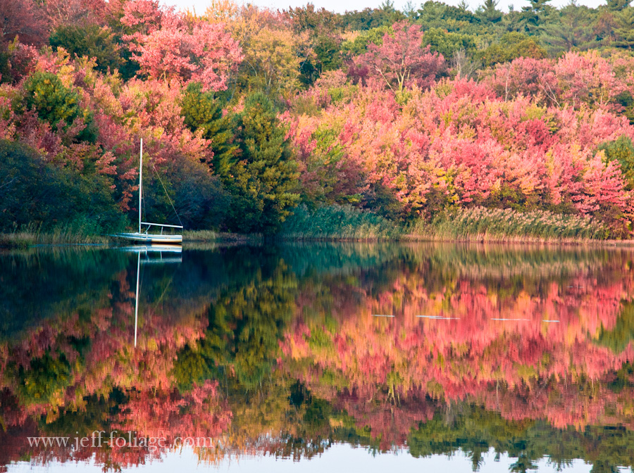 A pond full of New England fall reflections