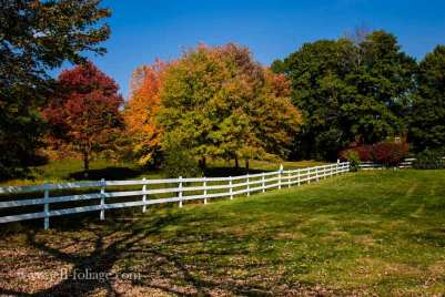 White picket fence in autumn