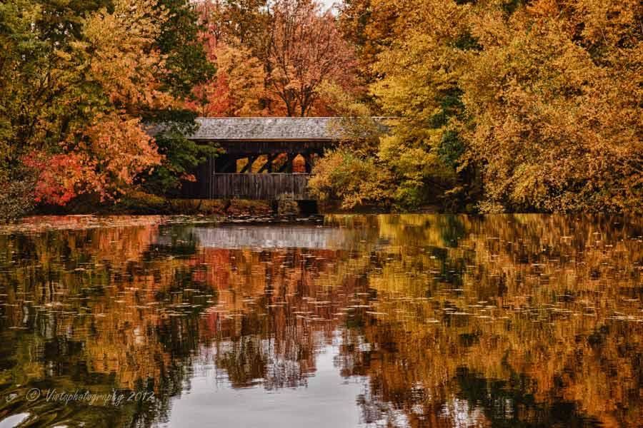 Kissing Bridge Vermont New England cove...