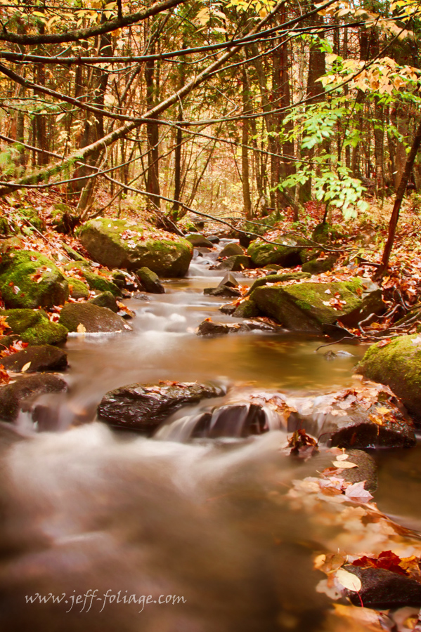 A small Vermont stream crossing under a Vermont back road