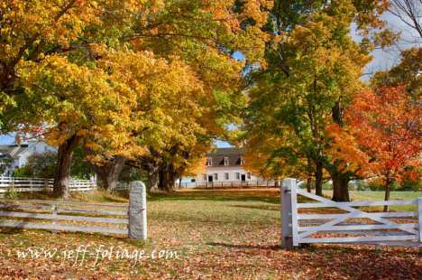 The fall colors lead the eye to the Canterbury Shaker Meeting House