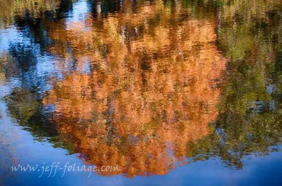 Fall colors reflections