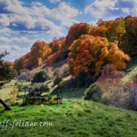 Vermont Fall Foliage Gallery