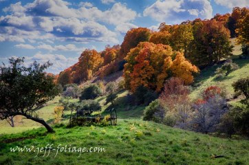 Farm equipment on a hillside covered in New England fall foliage