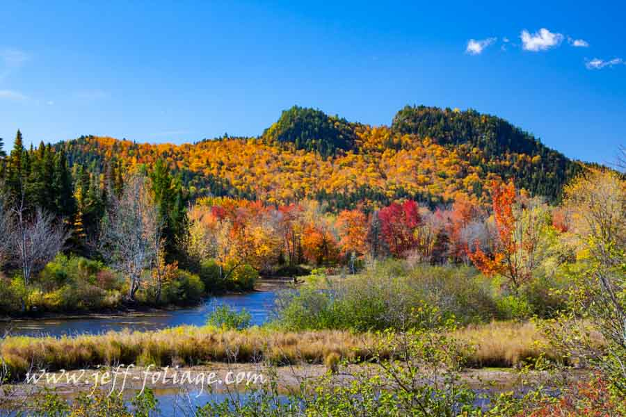 brightly colored New England fall foliage in northern New Hampshire
