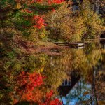 Fall colors on Chocorua river, New England Photography