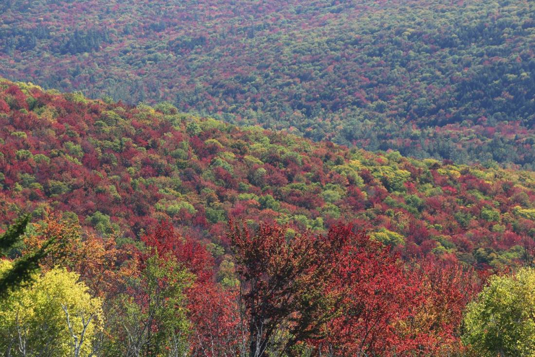 photo from henrys ledge near the east branch of the Pemmigewasset by http://www.whitemountainimages.org/