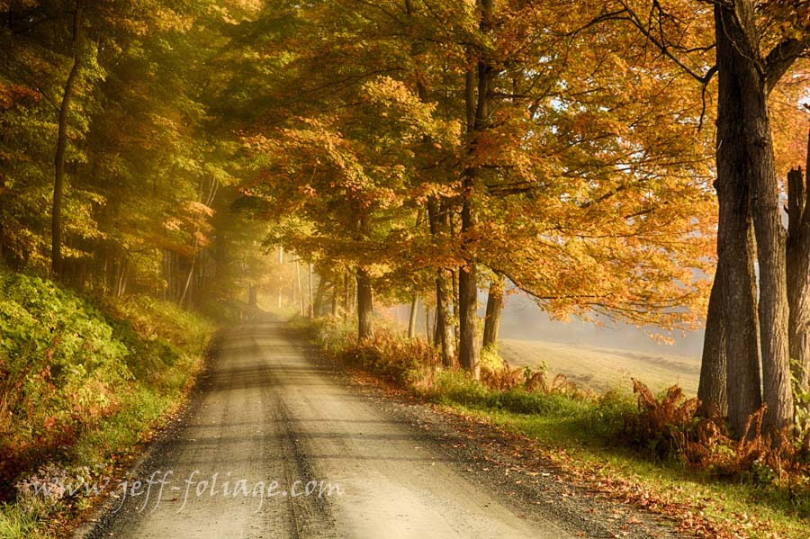 7 Oct fall foliage report from Cloudland road in Pomfret Vermont
