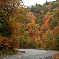 The Best Foliage drives in New England