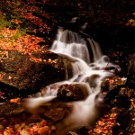 New England Photography of fall foliage surrounding a stream cutting it's way down the hill