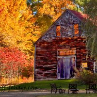 What does past peak mean in fall foliage terms?
