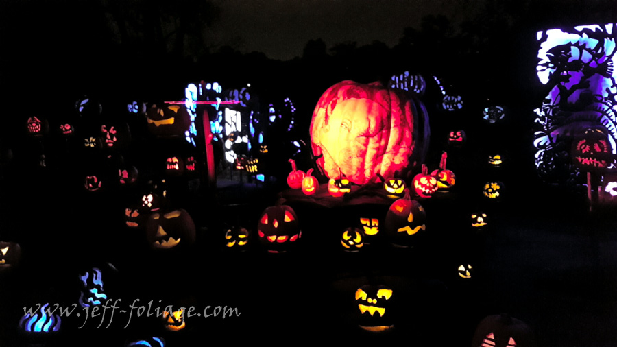 Roger Williams Zoo Pumpkin spectacular
