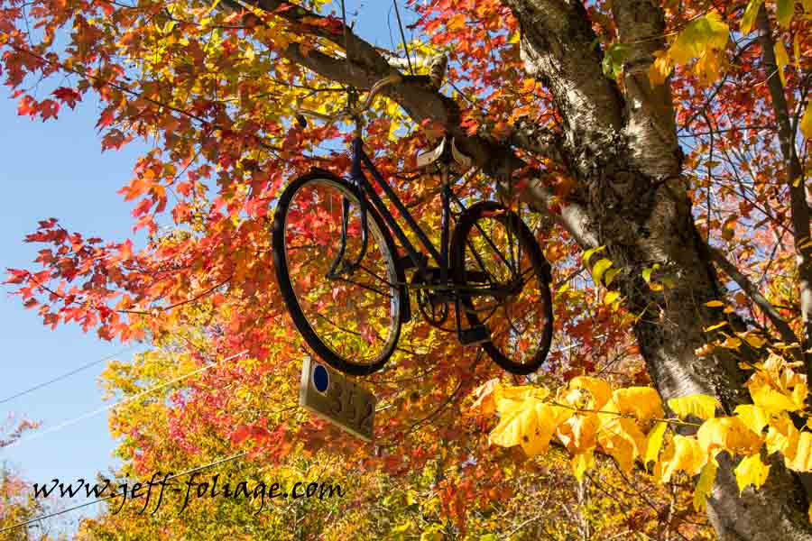Bicycle road marker in fall on Route 17 in New England fall foliage
